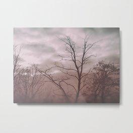 photo TREES #tree #photo Metal Print