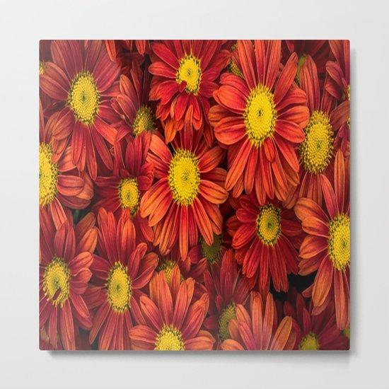 Flower-30 Metal Print