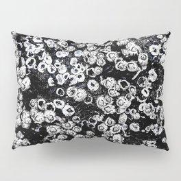 Black and White Barnacles Pillow Sham
