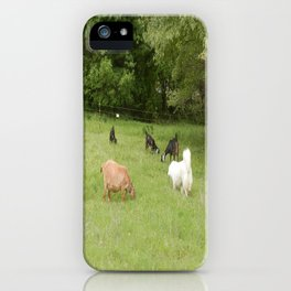 Goats & Great Pyrenees iPhone Case