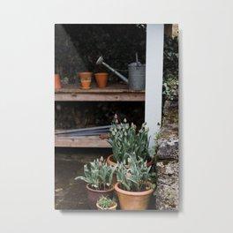 Spring Garden Shed Metal Print