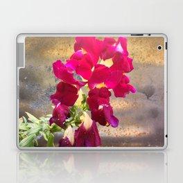 Snap dragon Laptop & iPad Skin