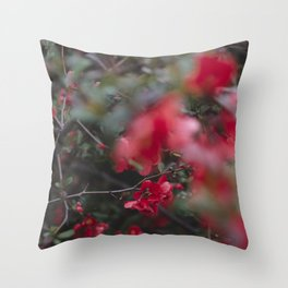 Strawberry Sorbet, I Throw Pillow