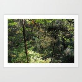 Grant Nature Art Print