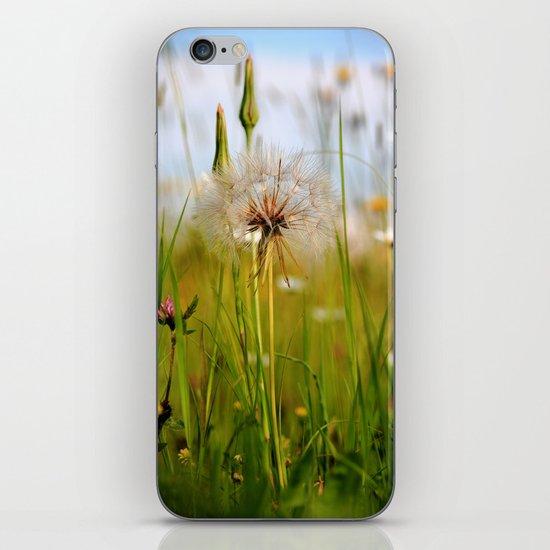 Summer Meadow Breeze iPhone & iPod Skin