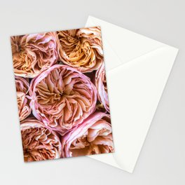Juliet Roses Stationery Cards