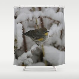 Yellow Rumped Warbler Shower Curtain