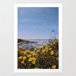 Point Loma Coast Art Print