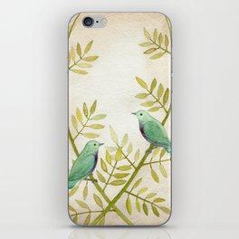 Celadon Birds iPhone Skin