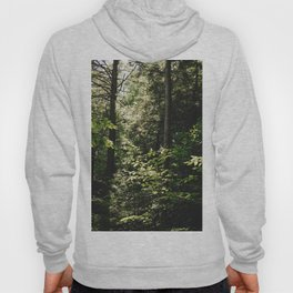 Cramped Forest Hoody