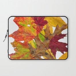 Autumn Fall Leaves Foliage Art Laptop Sleeve