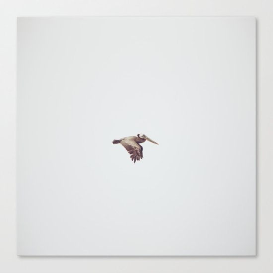 Solo Flight Canvas Print