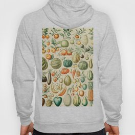Autumn Harvest // Fruits by Adolphe Millot XL 19th Century Pumpkins Science Textbook Artwork Hoody