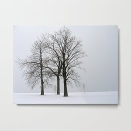 Three Trees in Winter Metal Print