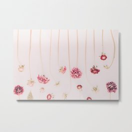 Strawflowers - Pink Flowers by Ingrid Beddoes Metal Print