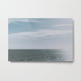 Freedom of birds flying above the Dutch - soft - colored - sea photography Metal Print