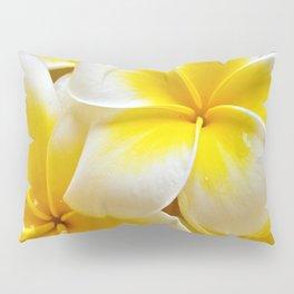 Plumeria Blossoms Pillow Sham
