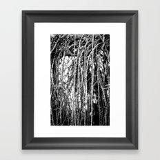 The Willow Framed Art Print