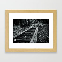 Wood Stains Framed Art Print