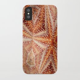 Urchin Mosaic iPhone Case