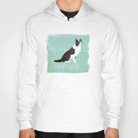border collie Hoodies featuring Border Collie by 52 Dogs