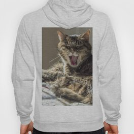 The laughing cat Hoody