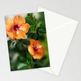 Orange Hibiscus Stationery Cards