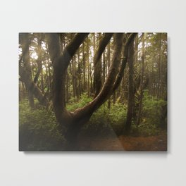 The Twisted Tree Metal Print