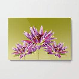 Lotos Flowers violet Metal Print