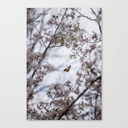 Sustenance Canvas Print
