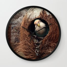 Seagreen Lovebird in the Coconut Wall Clock