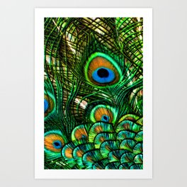 Eye of the Peacock Art Print