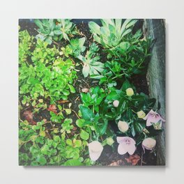 Almost a Garden Metal Print