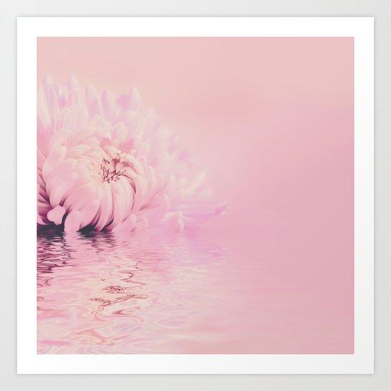 Romantic chrysanthemum flower soft pink pastel Art Print