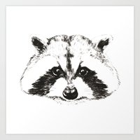 racoon Art Prints featuring racoon by eclecticliving