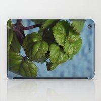 swedish iPad Cases featuring Swedish ivy by Camaracraft