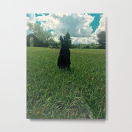Bunny in the Grass Metal Print