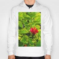 hibiscus Hoodies featuring Hibiscus by Rachel Butler