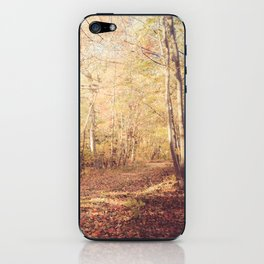 New England Autumn iPhone Skin