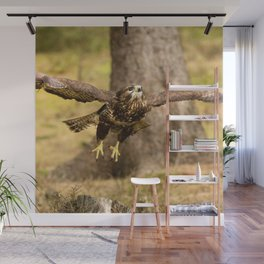 Common Buzzard Wall Mural