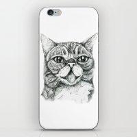 lil bub iPhone & iPod Skins featuring Bub by Leanne Engel