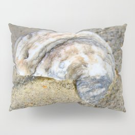 Shell in the Sand Pillow Sham