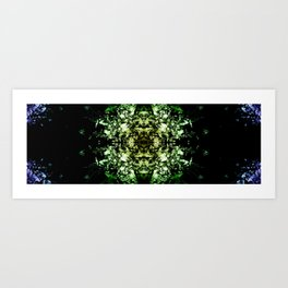 Kaleidoscope2 Art Print