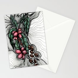 Coffee: from flower to toasted grain doodle. Stationery Cards