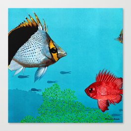 Butterfly & Bigeye fishes Canvas Print