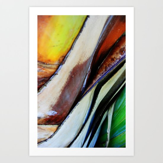 Abstract Palm 3 Art Print