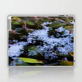 Icy Webb Laptop & iPad Skin