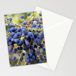 Blue Berries in Monet's Garden  Stationery Cards
