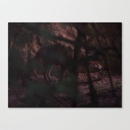 fox emerging from den Canvas Print