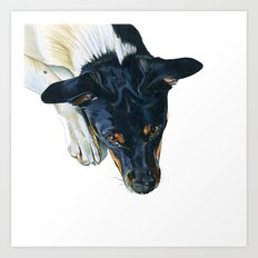 Swedish farm dog Art Print